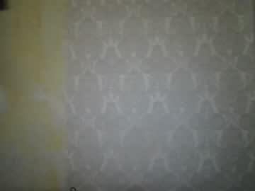 chikabombshellbella's chat room