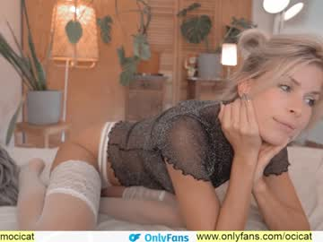 ocicat's chat room
