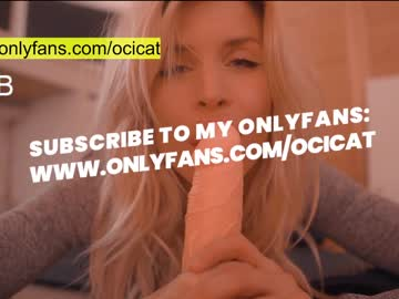 Live ocicat WebCams