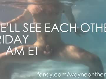 waynenorth's chat room
